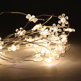Warm White Mini 40 LED Flower Shaped Battery String Lights